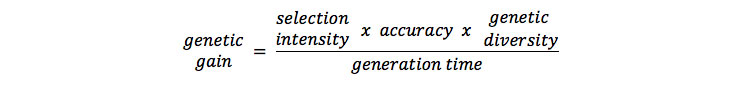 Breeders Equation