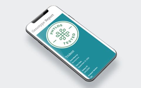 Phone displaying Genotype Report