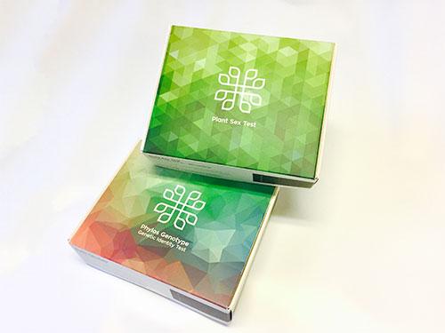 Both Boxes