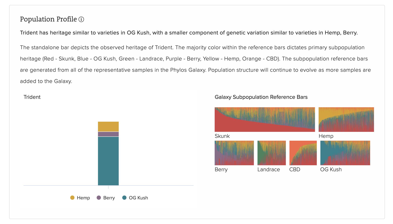 Genotype Report Population Profile layout